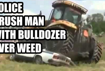POLICE CRUSH MAN WITH BULLDOZER OVER WEED!!!